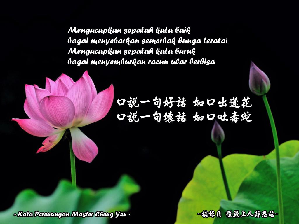 Kata Kata Bunga Terate