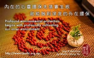 12006294_10153Harus terlebih dulu mengakarkan penerapan pelestarian lingkungan batin, baru mampu melakukan pelestarian lingkungan alam secara lebih mendalam.744414063984_2991535723704936216_n