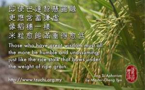 Seorang maha bijaksana harus lebih rendah hati lagi, bagai tanaman padi semakin berisi semakin tunduk.