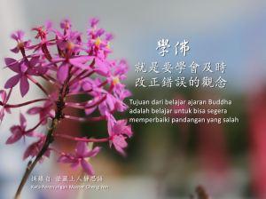 Tujuan dari belajar ajaran Buddha adalah belajar untuk bisa segera memperbaiki pandangan yang salah.